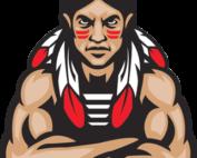 PT Indians